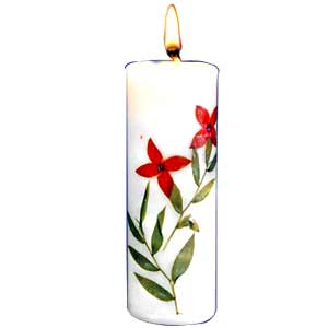 Ginger grass Terracotta candle